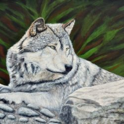 Gray Wolf In The Forest Acrylic Painting by the Canadian artist Brian Sloan