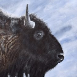 Buffalo Acrylic Painting by the Canadian artist Brian Sloan