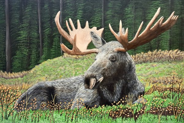 Moose In The Forest Acrylic Painting by the Canadian artist Brian Sloan